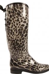 däv Snow Leopard